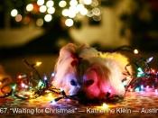 067. Waiting for Christmas