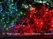 097. Night Lights