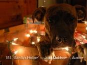 151. Santa\'s Helper