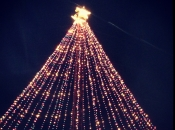 015. Zilker Christmas Tree
