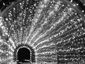 044. Tunnel Vision of Lights