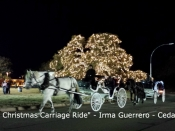 073. A Christmas Carriage Ride