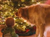 119. The Wonder Of Christmas