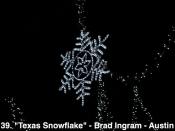 139. Texas Snowflake