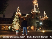 144. Baylor Christmas Tree