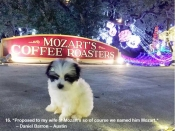 16. Proposed to my wife at Mozart's so of course we named him Mozart