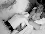 42. Sleeping in Santa's Arms