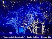 5.  Chistmas Light Spectacular