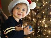 54. Santa's Elf Decorating The Tree