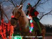 8. Texas Rudolph