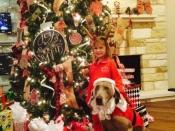 107. Santa Got Ran Over by a Weimaraner!