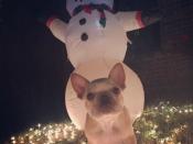 122. Snowman Guard Dog