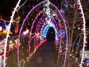 125. Spirit Orb In Light Tunnel