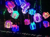 132. Gift Box Lights at Mozarts