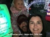 135. Christmas Lights