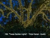 138. Texas Garden Lights
