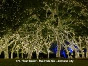 173. Star Trees