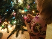 175. Decorating the Tree