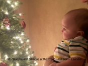 031. Baby's First Glimpse at the Tree