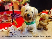 077. Coopers First Christmas in Texas