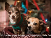 163. Hershey & Coco, Brotherly Love