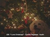 226. I Love Christmas!