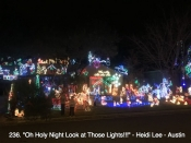 236. Oh Holy Night Look at Those Lights!!!