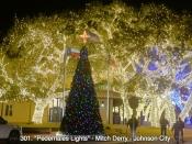 301. Pedernales Lights