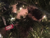 043. Lost Kitten Found in Christmas Tree