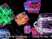 047 Ching Yu Hsu